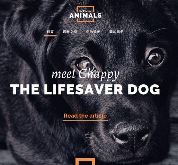 Animals-RWD響應式網頁設計